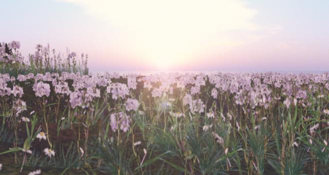 SueGeeli DeCuir - Rise in Spring .png