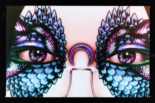 Mesange Borealis Eyes at Genre